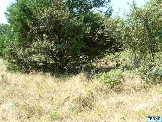 13 Buckskin, Morgan's Point, TX 76513 (MLS #9110417) :: Magnolia Realty