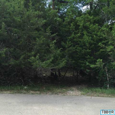 37 Corkwood Court, Morgan's Point, TX 76513 (MLS #9113756) :: Magnolia Realty