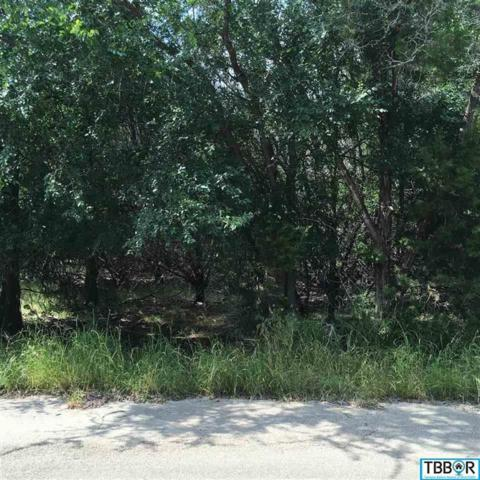 23 Dogwood, Morgan's Point, TX 76513 (MLS #9113758) :: Magnolia Realty