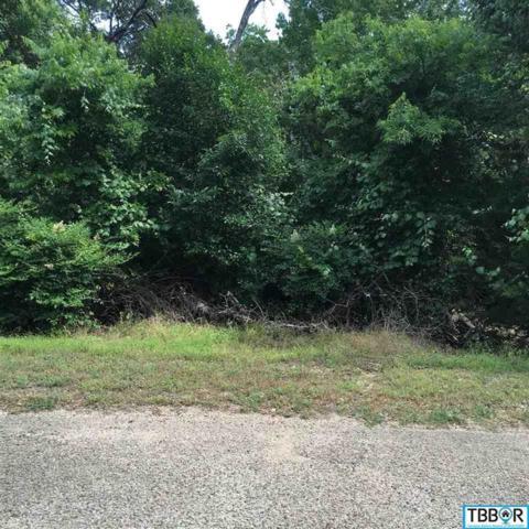 19 Cliffside, Morgan's Point, TX 76513 (MLS #9113759) :: Magnolia Realty