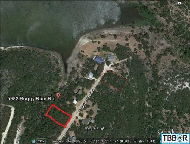 5982 Buggy Ride, Temple, TX 76502 (MLS #9114732) :: The Zaplac Group