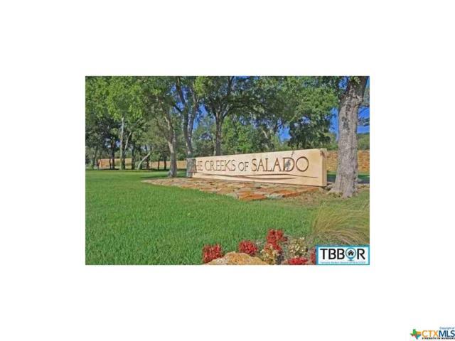 2000 The Creeks Drive, Salado, TX 76571 (MLS #9116575) :: Magnolia Realty