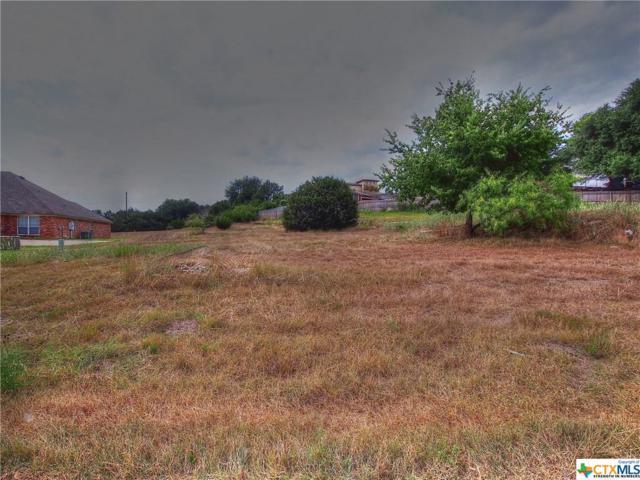 2705 Mystic Mountain, Belton, TX 76513 (MLS #319620) :: Erin Caraway Group