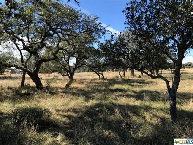 1644 Lake Ridge Boulevard, Canyon Lake, TX 78133 (MLS #326396) :: Magnolia Realty