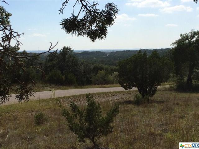 224 Magnolia Meadow, Canyon Lake, TX 78133 (MLS #326837) :: Magnolia Realty