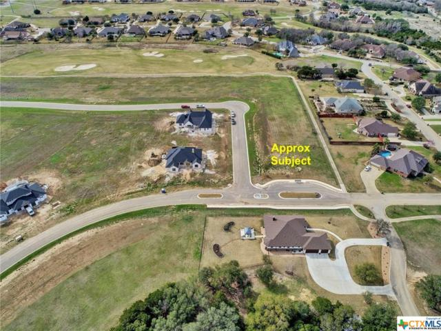 1302 Kyleigh Drive, Salado, TX 76571 (MLS #327001) :: Vista Real Estate