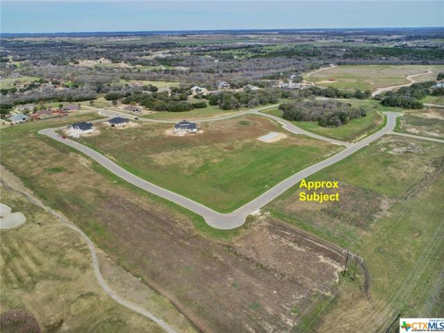1414 Stone Russell Drive, Salado, TX 76571 (MLS #327096) :: Vista Real Estate