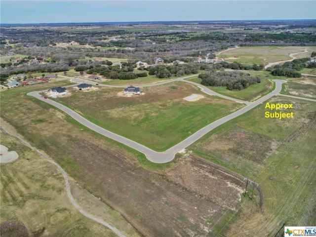 1432 Stone Russell Drive, Salado, TX 76571 (MLS #327105) :: Vista Real Estate