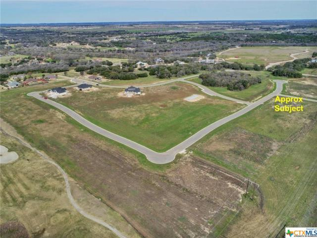 TBD Lot 1 Stone Russell Drive, Salado, TX 76571 (MLS #327106) :: Kopecky Group at RE/MAX Land & Homes
