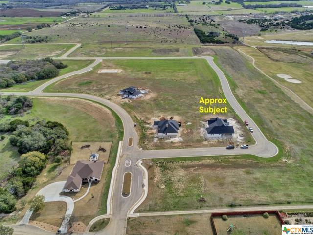1325 Kyleigh Drive, Salado, TX 76581 (MLS #327229) :: Vista Real Estate