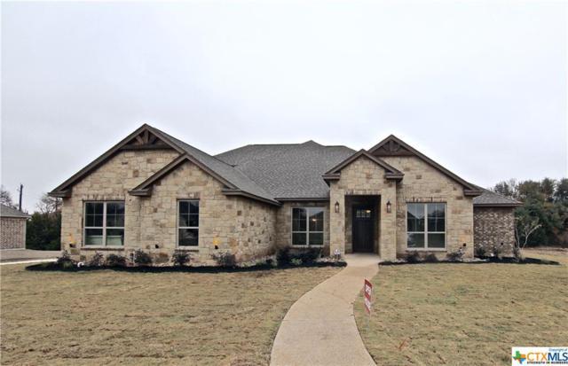 446 Creekside Drive, Belton, TX 76513 (MLS #331112) :: Magnolia Realty