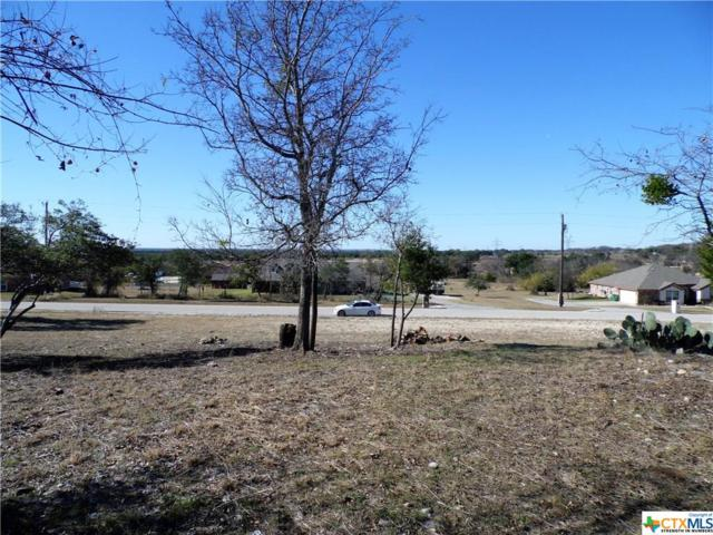 326 County Road 4773, Kempner, TX 76539 (MLS #331195) :: Magnolia Realty