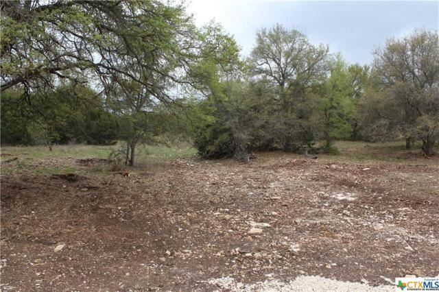 Track 4 Shiny Top Ranch Lane, Salado, TX 76571 (MLS #332006) :: Magnolia Realty