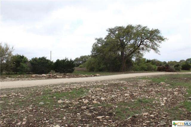 Track 8 Shiny Top Ranch Lane, Salado, TX 76571 (MLS #332010) :: Magnolia Realty