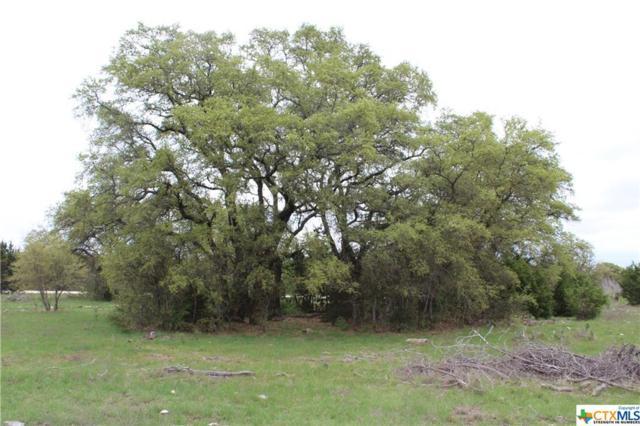 Track 10 Shiny Top Ranch Lane, Salado, TX 76571 (MLS #332013) :: Magnolia Realty