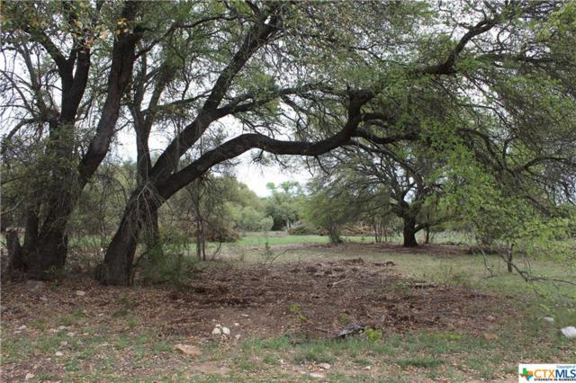 Track 12 Shiny Top Ranch Lane, Salado, TX 76571 (MLS #332015) :: Marilyn Joyce | All City Real Estate Ltd.