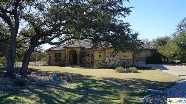 1505 Cabernet, New Braunfels, TX 78132 (MLS #332979) :: The Suzanne Kuntz Real Estate Team
