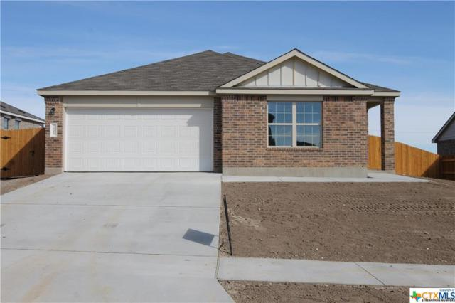 3805 Endicott, Killeen, TX 76549 (MLS #333275) :: Texas Premier Realty