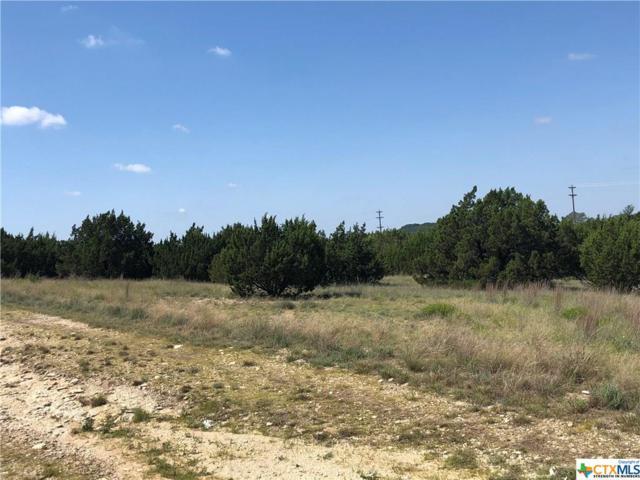 001 Big Divide, Copperas Cove, TX 76522 (MLS #333313) :: RE/MAX Land & Homes