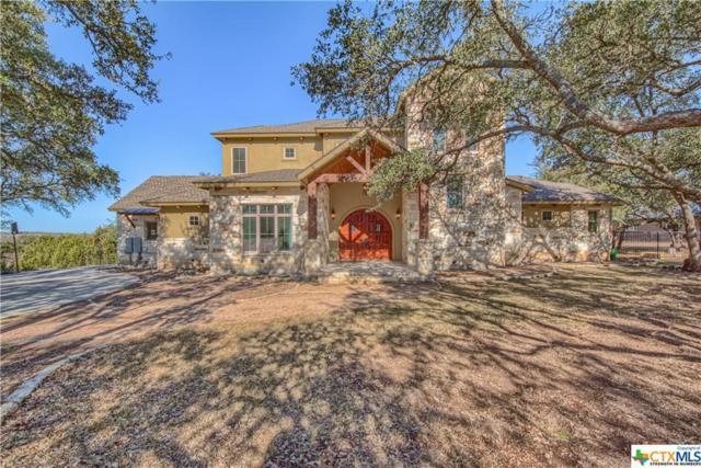 1313 E Ensenada Drive, Canyon Lake, TX 78133 (MLS #334596) :: Magnolia Realty