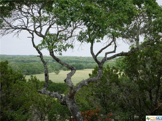 324 Stars And Stripes, Fischer, TX 78623 (MLS #334747) :: Magnolia Realty