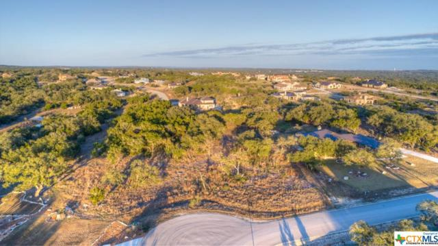 5918 Camp Creek, New Braunfels, TX 78132 (#336622) :: Realty Executives - Town & Country