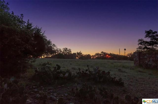 423 Hidden Springs, Spring Branch, TX 78070 (MLS #336647) :: Magnolia Realty