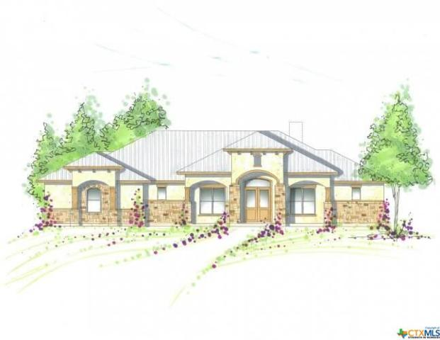 423 Hidden Springs, Spring Branch, TX 78070 (MLS #337085) :: Magnolia Realty