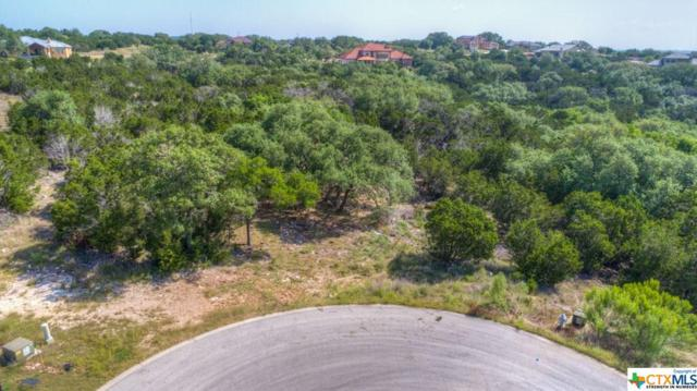 311 Valley Lodge, New Braunfels, TX 78132 (#337416) :: Realty Executives - Town & Country