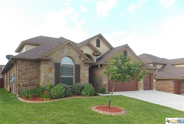 810 Terra Cotta Court, Harker Heights, TX 76548 (MLS #339194) :: Erin Caraway Group