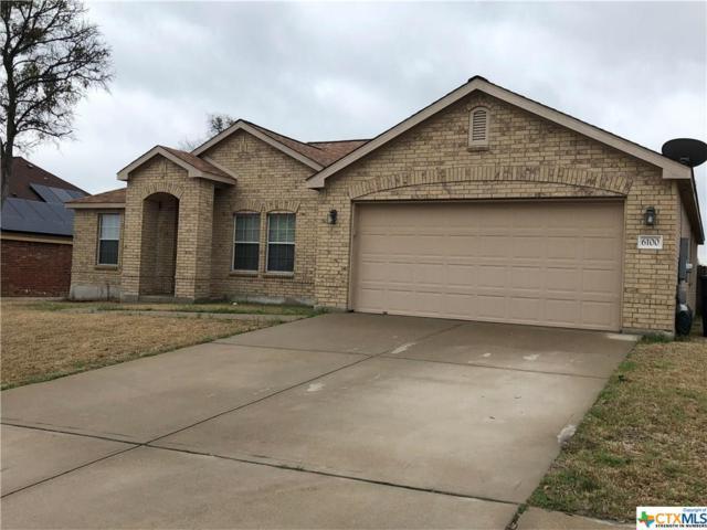 6100 Mosaic Trail, Killeen, TX 76542 (MLS #339222) :: Texas Premier Realty