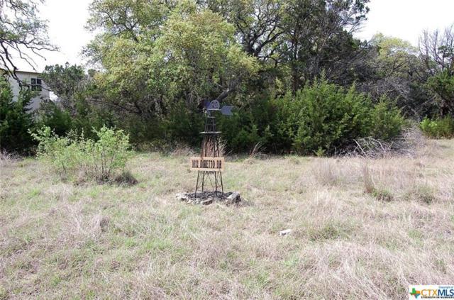 1032 Diretto, New Braunfels, TX 78132 (MLS #339696) :: The Suzanne Kuntz Real Estate Team