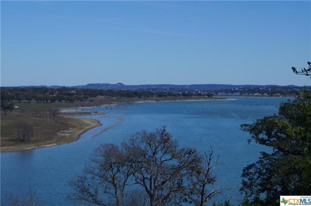 2116 San Jose, Canyon Lake, TX 78133 (MLS #339839) :: Magnolia Realty
