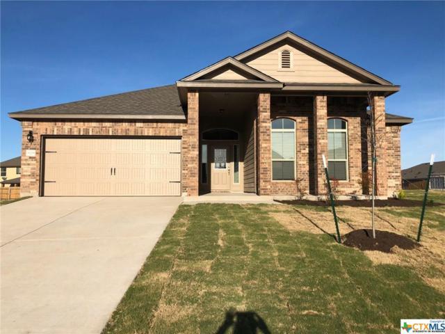5229 Fenton Drive, Belton, TX 76513 (MLS #340931) :: The i35 Group