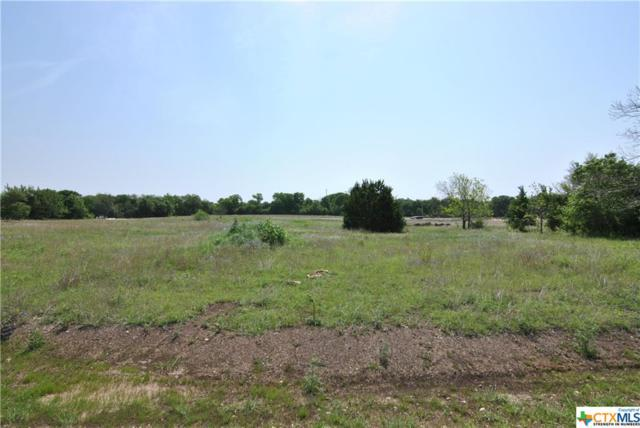 119 Cumberland Drive, Temple, TX 76513 (MLS #343204) :: Berkshire Hathaway HomeServices Don Johnson, REALTORS®