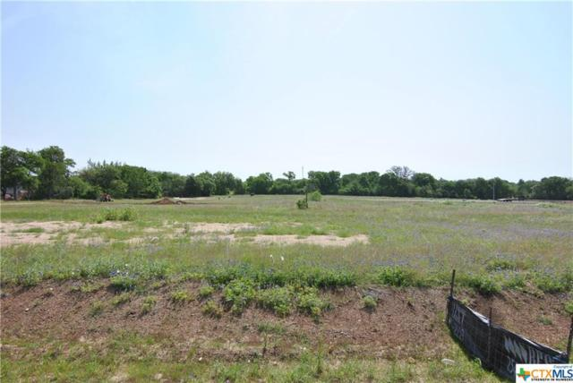 123 Cumberland Drive, Temple, TX 76513 (MLS #343218) :: Erin Caraway Group