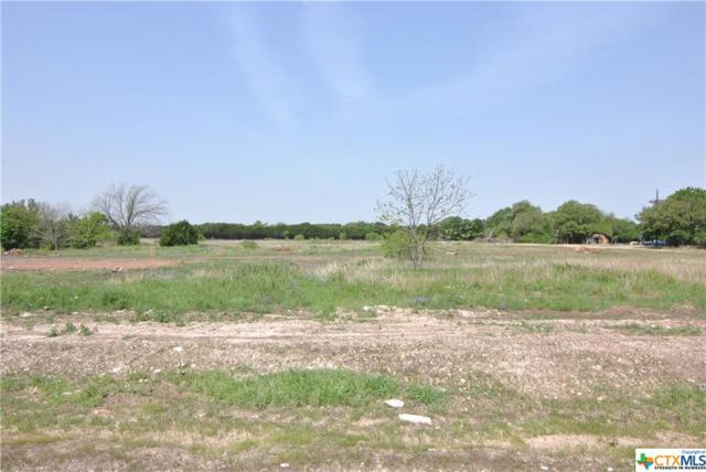 124 Chattanooga Court, Temple, TX 76513 (MLS #343386) :: Magnolia Realty