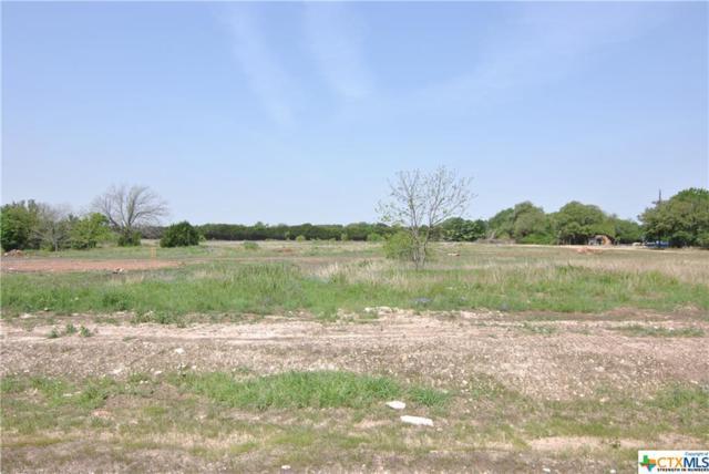 124 Chattanooga Court, Temple, TX 76513 (MLS #343386) :: Berkshire Hathaway HomeServices Don Johnson, REALTORS®