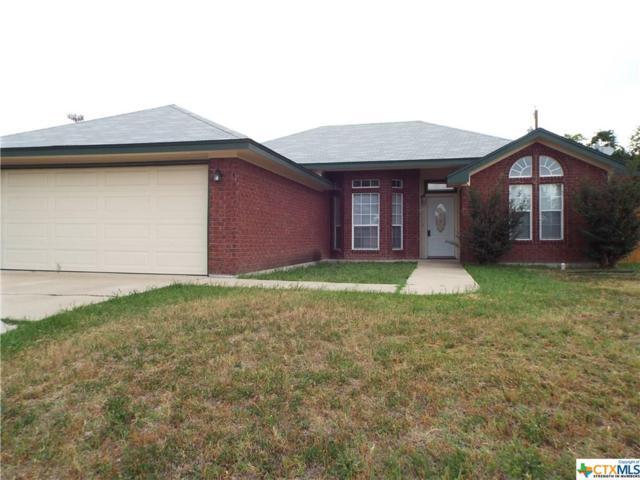 3611 Crosscut Loop, Killeen, TX 76542 (MLS #343772) :: Erin Caraway Group
