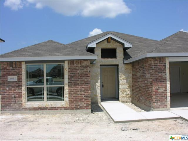 865 Ross Road, Copperas Cove, TX 76522 (MLS #345312) :: Erin Caraway Group