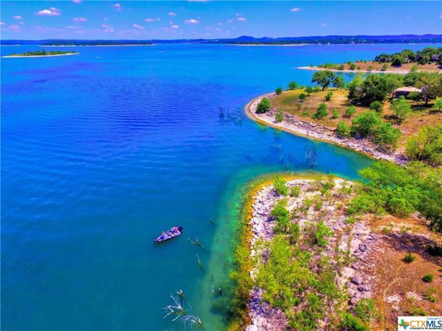 1515 Blue Water, Canyon Lake, TX 78133 (MLS #346689) :: Erin Caraway Group