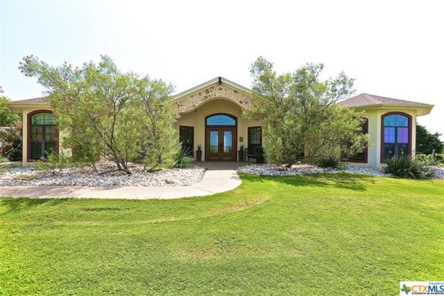 300 Cr 433, Lorena, TX 76655 (MLS #347052) :: Kopecky Group at RE/MAX Land & Homes