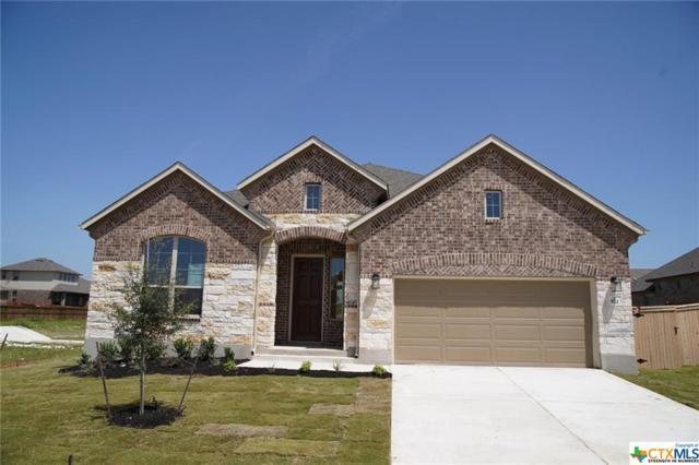 921 Sussex Cove, Cibolo, TX 78108 (MLS #347355) :: The Suzanne Kuntz Real Estate Team