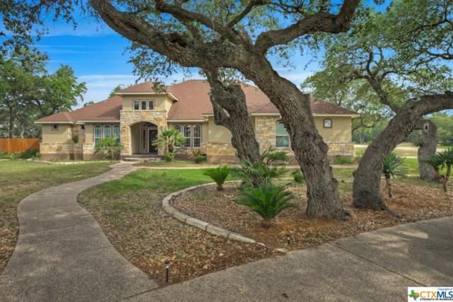 1617 Shady Hollow, New Braunfels, TX 78132 (MLS #347566) :: Erin Caraway Group
