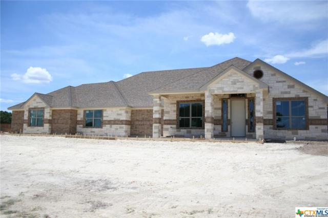 249 Skyline Drive, Copperas Cove, TX 76522 (MLS #348045) :: Erin Caraway Group