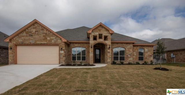3603 Dodge City Dr Drive, Killeen, TX 76549 (MLS #348224) :: The Suzanne Kuntz Real Estate Team