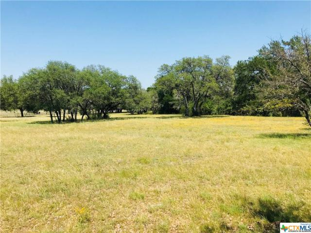 10653 E Trimmier Lot 2, Killeen, TX 76542 (MLS #349016) :: Kopecky Group at RE/MAX Land & Homes