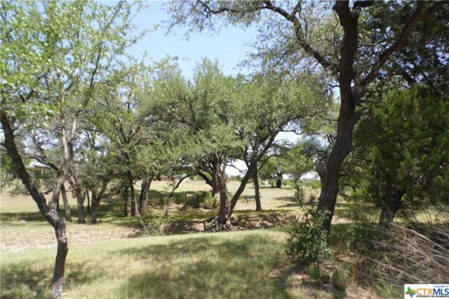 5.68 acres Honeysuckle, Killeen, TX 76549 (MLS #353802) :: Erin Caraway Group