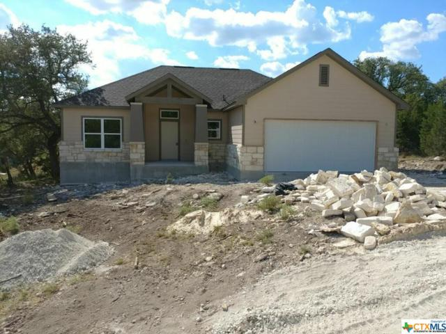 160 Flint Circle Drive, Canyon Lake, TX 78133 (MLS #353813) :: Erin Caraway Group