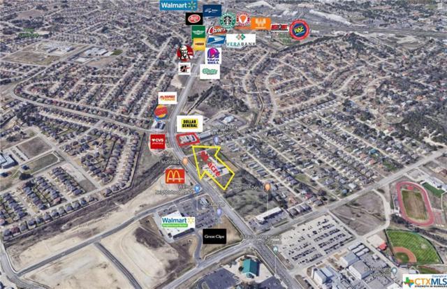901 Mountain Lion, Harker Heights, TX 76548 (MLS #355200) :: The Graham Team
